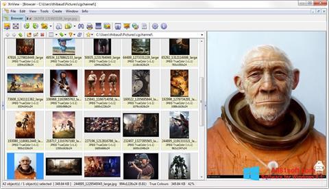 ภาพหน้าจอ XnView สำหรับ Windows 8.1