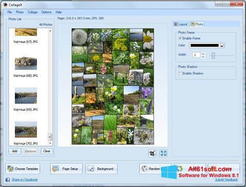 ภาพหน้าจอ CollageIt สำหรับ Windows 8.1