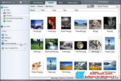 ภาพหน้าจอ RealPlayer สำหรับ Windows 8.1
